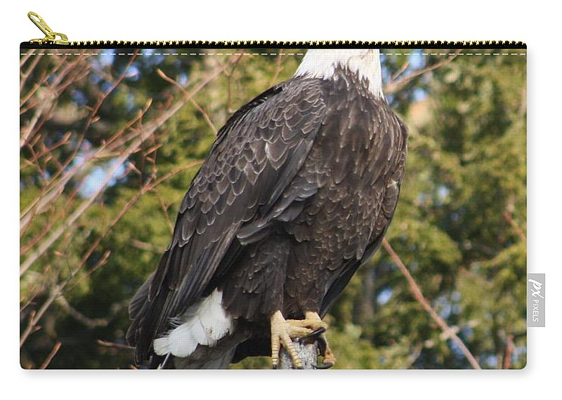 Eagle Carry-all Pouch featuring the photograph Eagle 1985 by Joseph Marquis