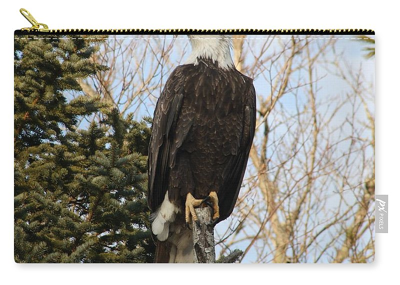 Eagle Carry-all Pouch featuring the photograph Eagle 5 by Joseph Marquis