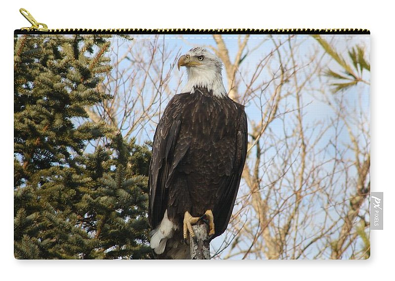 Eagle Carry-all Pouch featuring the photograph Eagle 6 by Joseph Marquis