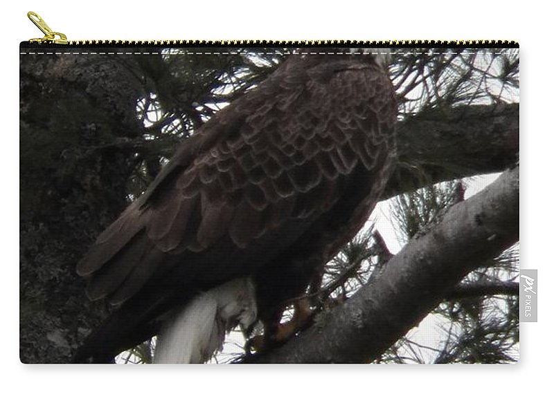 Eagle Carry-all Pouch featuring the photograph Eagle 9786 by Joseph Marquis