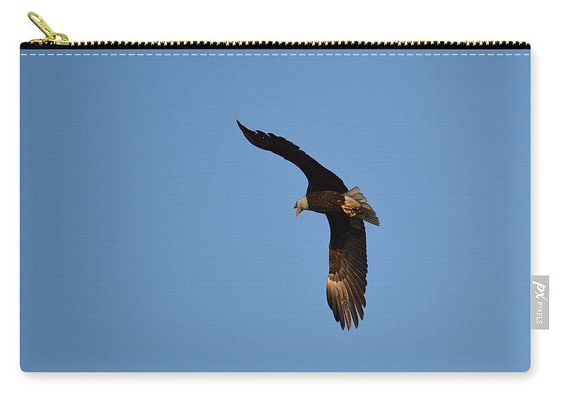 Eagle Carry-all Pouch featuring the photograph Eagle Flight 3 by Bonfire Photography