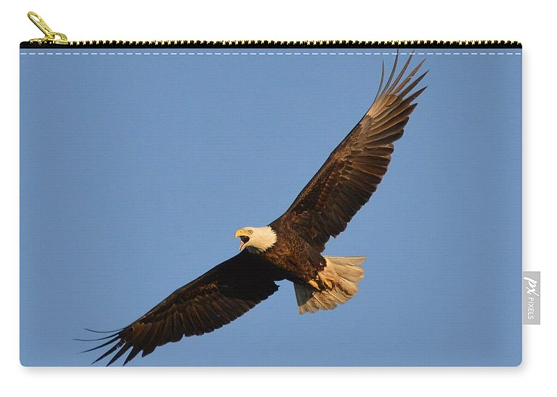 Eagle Carry-all Pouch featuring the photograph Eagle Flight 5 by Bonfire Photography