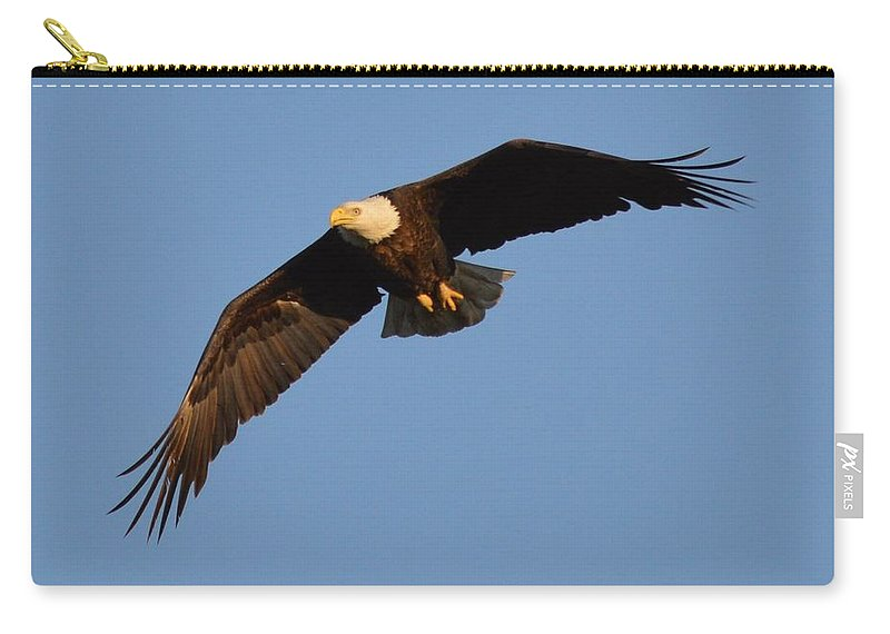 Eagle Carry-all Pouch featuring the photograph Eagle Flight 6 by Bonfire Photography