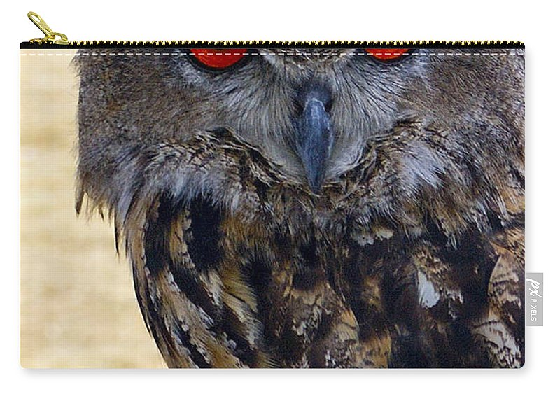 Owl Carry-all Pouch featuring the photograph Eagle Owl by Anthony Sacco