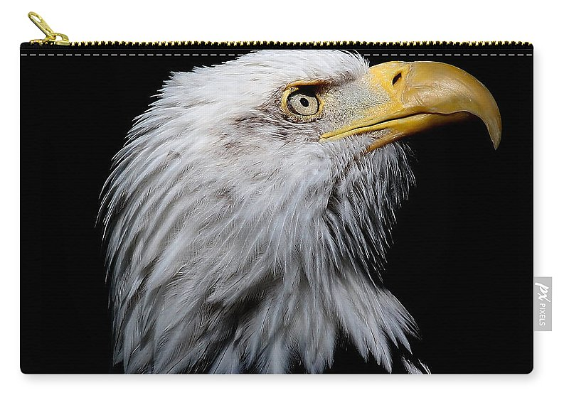 Eagle Carry-all Pouch featuring the photograph Eagle Portrait II by Athena Mckinzie