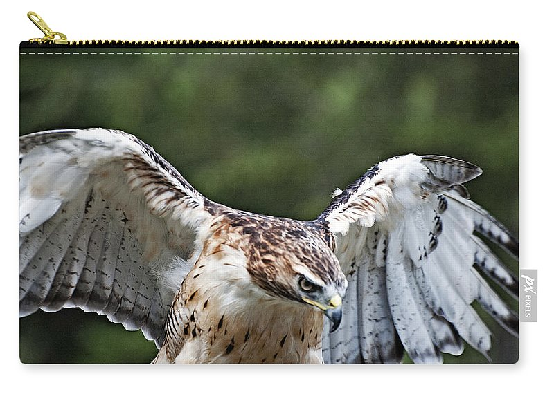 Carry-all Pouch featuring the photograph Eagle Wings by Bill Howard