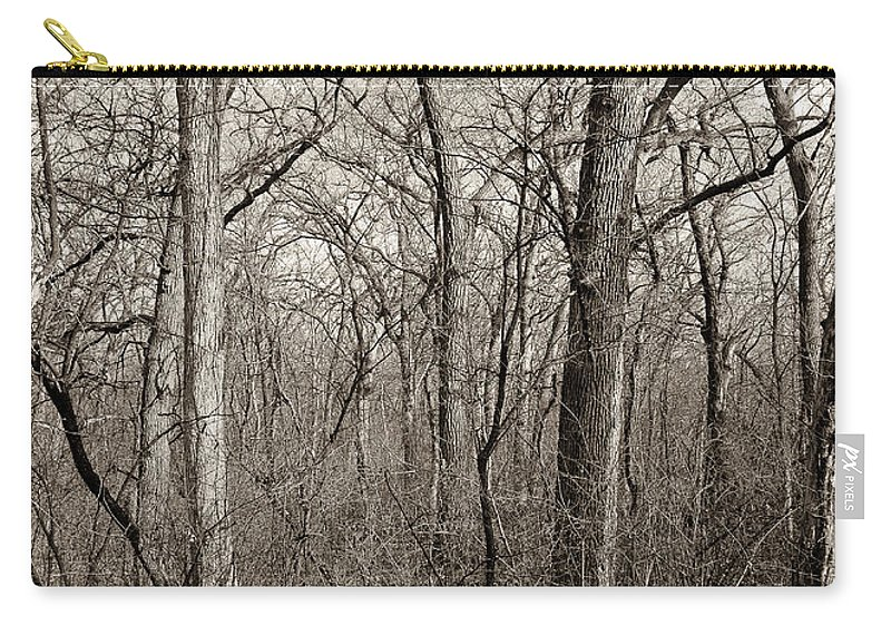 Arboretum Carry-all Pouch featuring the photograph Early Spring by Steven Ralser