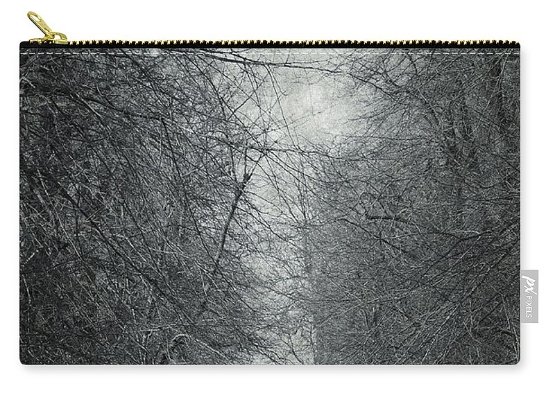 Air Carry-all Pouch featuring the photograph Early Spring by Svetlana Sewell