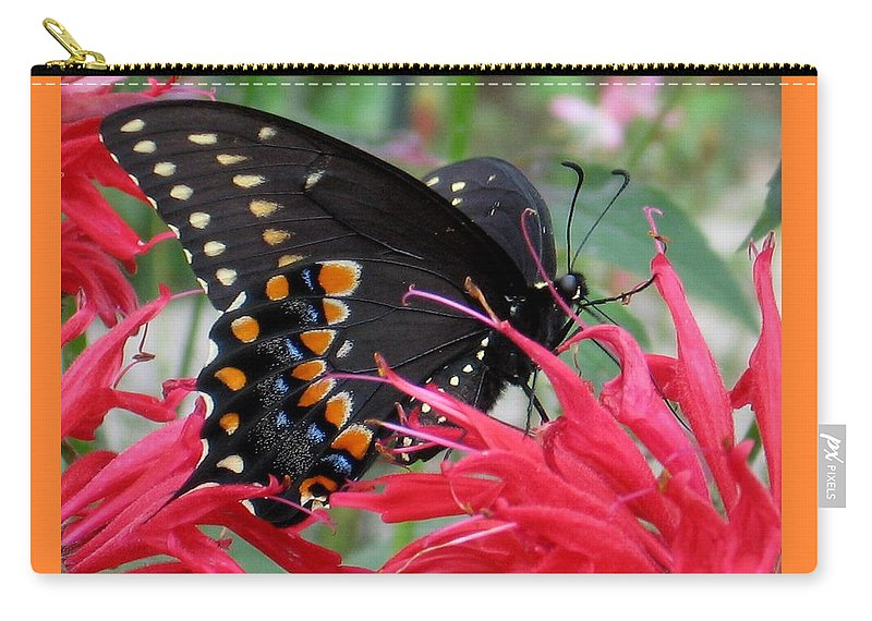 Butterfly Carry-all Pouch featuring the photograph Eastern Black Swallowtail And Bee Balm by Melinda Marsh