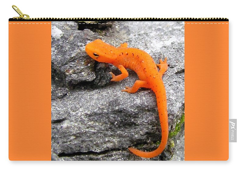 Lizard Carry-all Pouch featuring the photograph Morphing In Massachusetts by Lori Pessin Lafargue