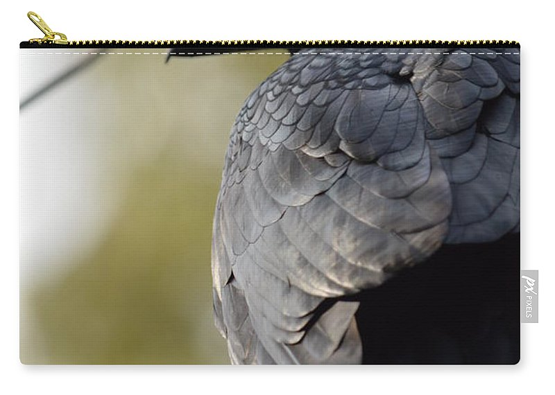 Ebony Carry-all Pouch featuring the photograph Ebony Shawl by Brian Boyle