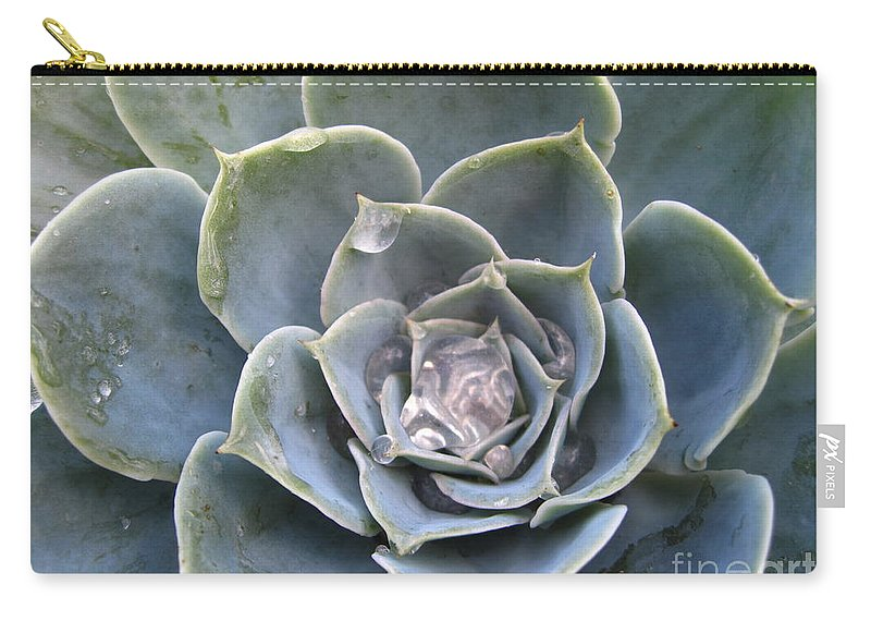 Abstract Carry-all Pouch featuring the photograph Echeveria With Water Drops by Amanda Mohler