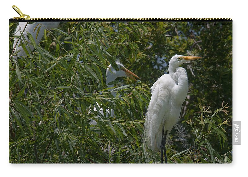 Egret Carry-all Pouch featuring the photograph Egrets In Tree by Dale Powell