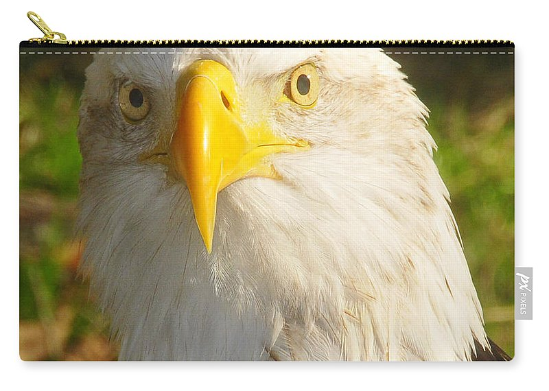 American Bald Eagle Carry-all Pouch featuring the photograph Bald Eagle Head Shot Two by David Lee Thompson