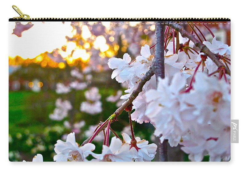 Flowers Carry-all Pouch featuring the photograph Einstein's Blossoms by Lexi Heft