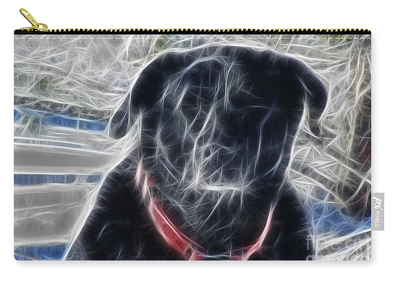 Electrostatic Black Lab Carry-all Pouch featuring the photograph Electrostatic Black Lab by Barbara Griffin