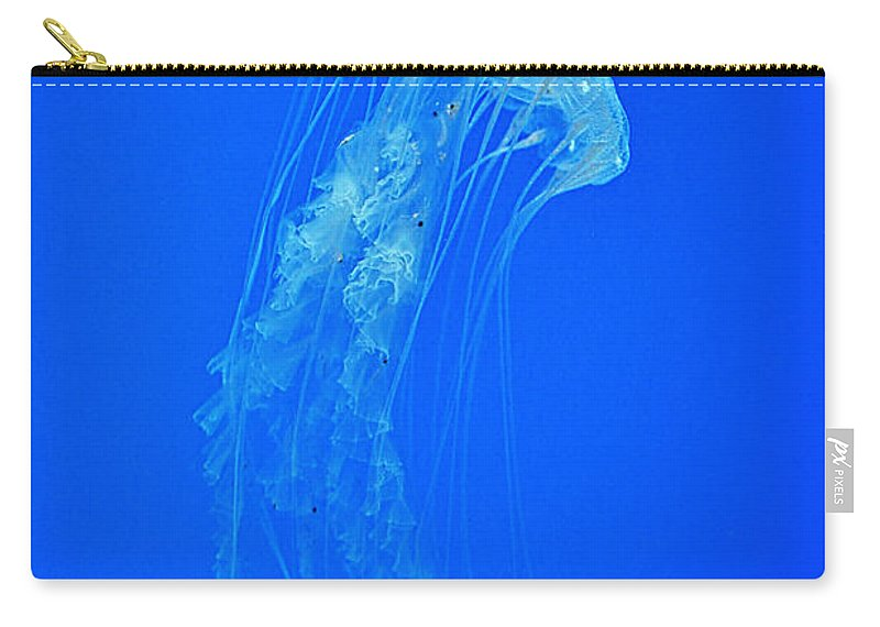 Blue Carry-all Pouch featuring the photograph Elegance In Blue by Photos By Cassandra