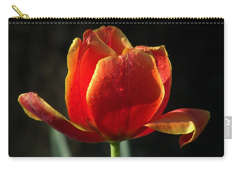 Flowers Carry-all Pouch featuring the photograph Elegance Of Spring by Karen Wiles