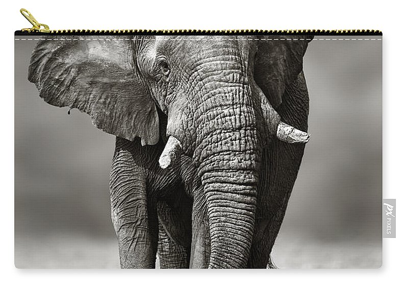 Elephant Carry-all Pouch featuring the photograph Elephant Approach From The Front by Johan Swanepoel