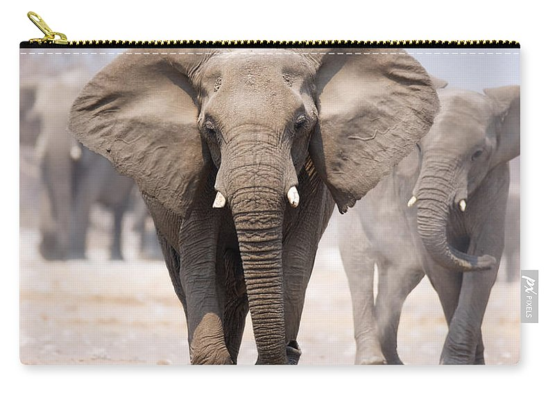 Wild Carry-all Pouch featuring the photograph Elephant Bathing by Johan Swanepoel