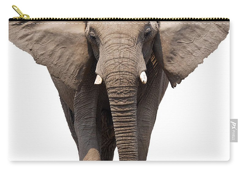 Wild Carry-all Pouch featuring the photograph Elephant Isolated by Johan Swanepoel