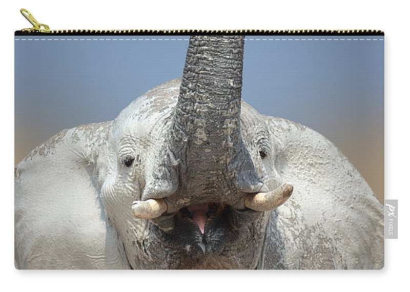 Wild Carry-all Pouch featuring the photograph Elephant Portrait by Johan Swanepoel