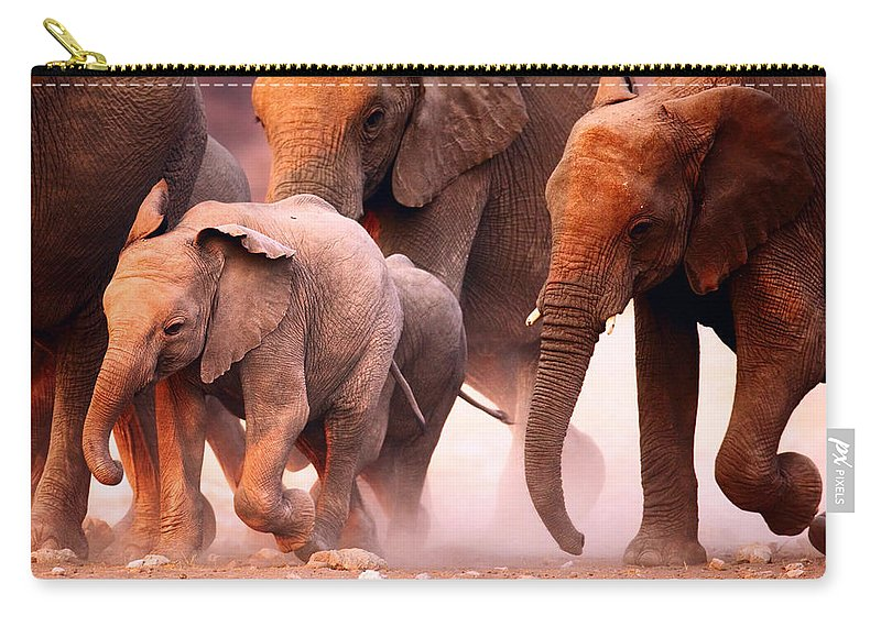 Wild Carry-all Pouch featuring the photograph Elephants Stampede by Johan Swanepoel