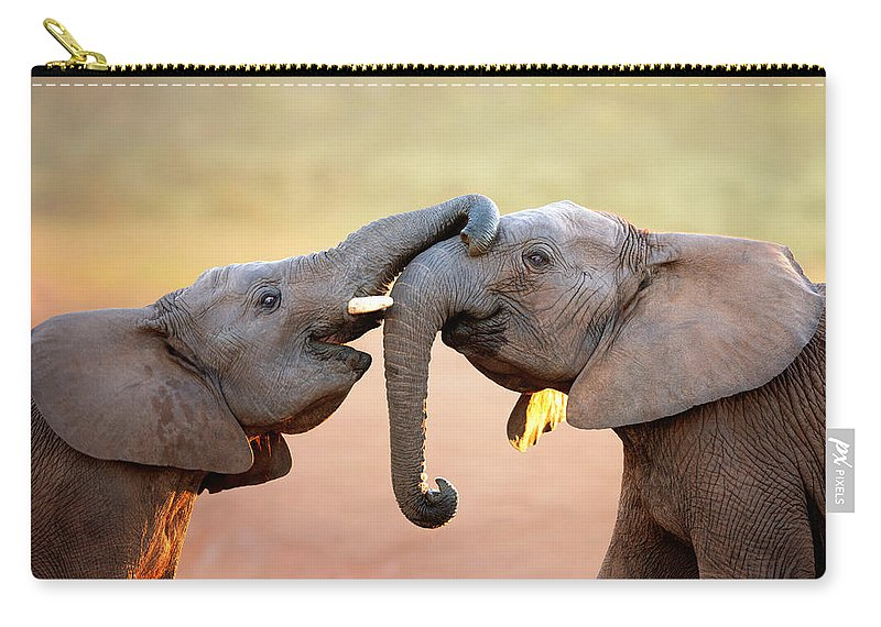 Elephant Carry-all Pouch featuring the photograph Elephants Touching Each Other by Johan Swanepoel