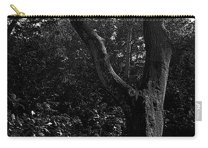 Elizabethan Gardens Carry-all Pouch featuring the photograph Elizabethan Gardens Tree In B And W by Greg Reed