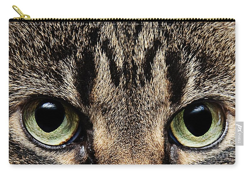 Cat Carry-all Pouch featuring the photograph Emmy Eyes by Andee Design