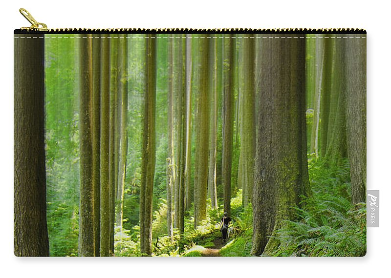 Neahkahnie Carry-all Pouch featuring the photograph Enchantment by Don Schwartz