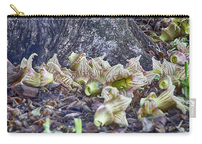 End-of-life. Flowers Carry-all Pouch featuring the photograph End-of-life V5 by Douglas Barnard