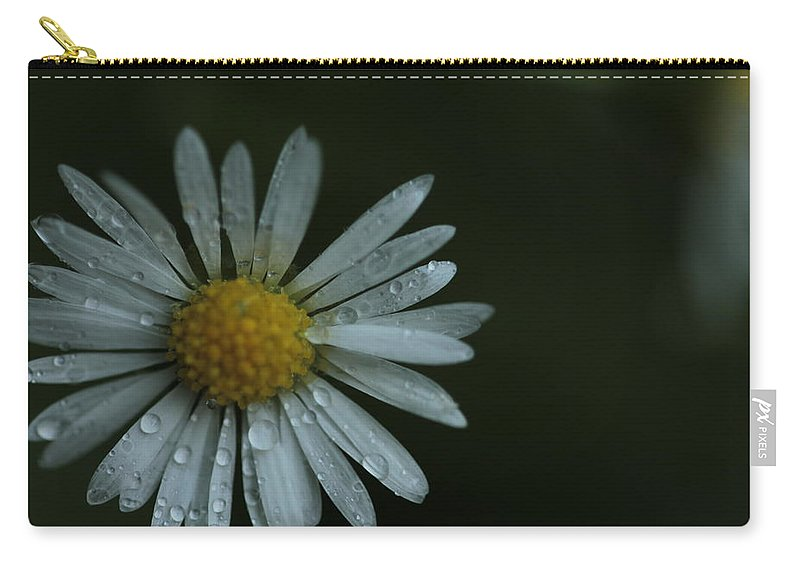 Daisy Carry-all Pouch featuring the photograph English Daisy And Rain Drops by Valerie Collins