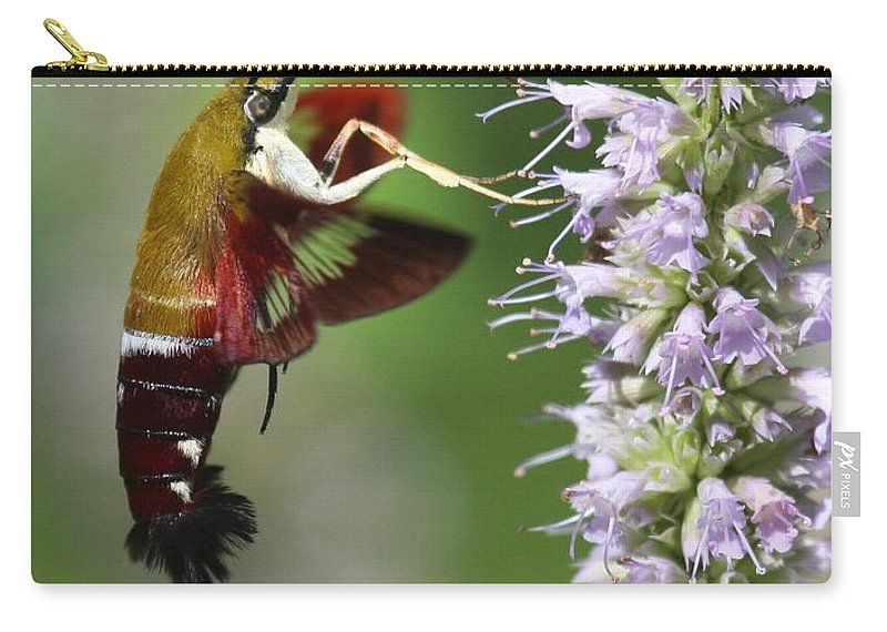 Moths Carry-all Pouch featuring the photograph Enjoying The Flowers by Myrna Bradshaw
