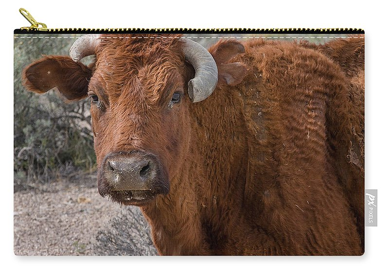 Bull Carry-all Pouch featuring the photograph E.t. Highway Bull by Greg Nyquist