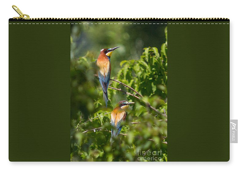Bulgaria Carry-all Pouch featuring the photograph European Bee-eater by Jivko Nakev