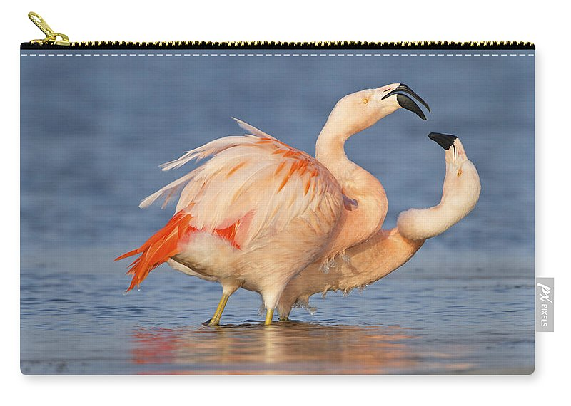 Nis Carry-all Pouch featuring the photograph European Flamingo Pair Courting by Ronald Kamphius