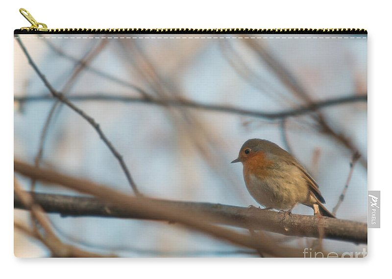 Erithacus Rubecula Carry-all Pouch featuring the photograph European Robin by Jivko Nakev