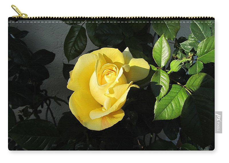 Yellow Rose Carry-all Pouch featuring the photograph Evening Sun by Helmut Rottler