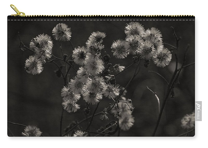Wildflowers Carry-all Pouch featuring the photograph Everlasting by Susan Capuano