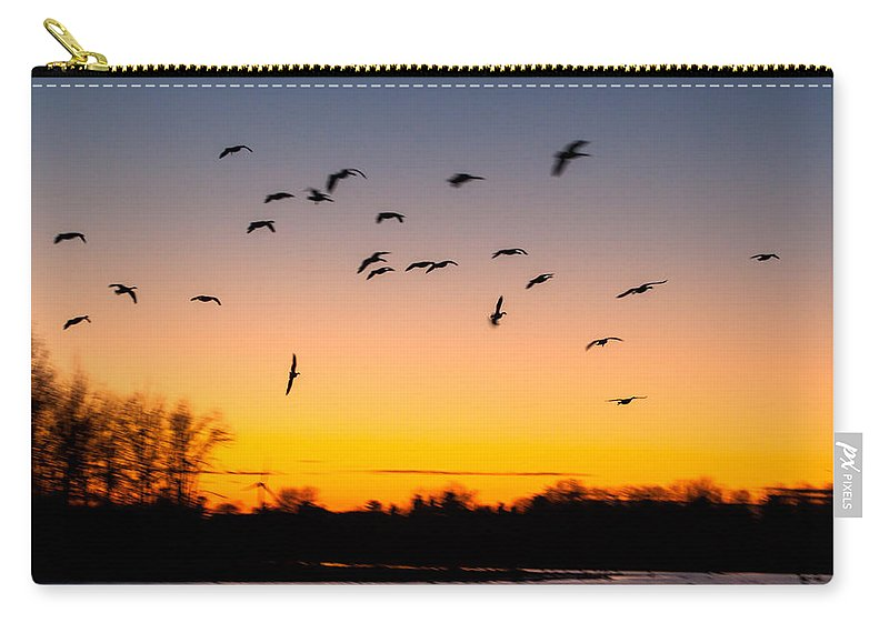 Goose Carry-all Pouch featuring the photograph Every Which Way by Thomas Sellberg