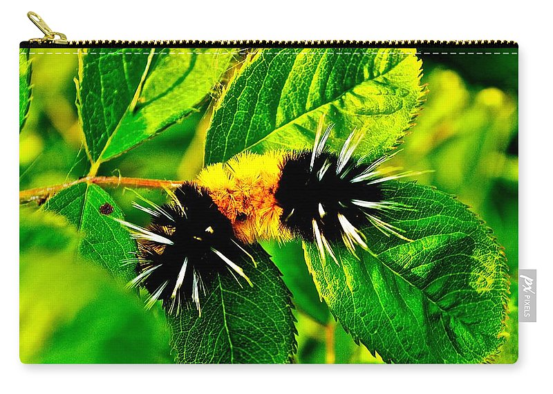 Caterpiller Carry-all Pouch featuring the photograph Exploring Possibilities by Jim Hogg