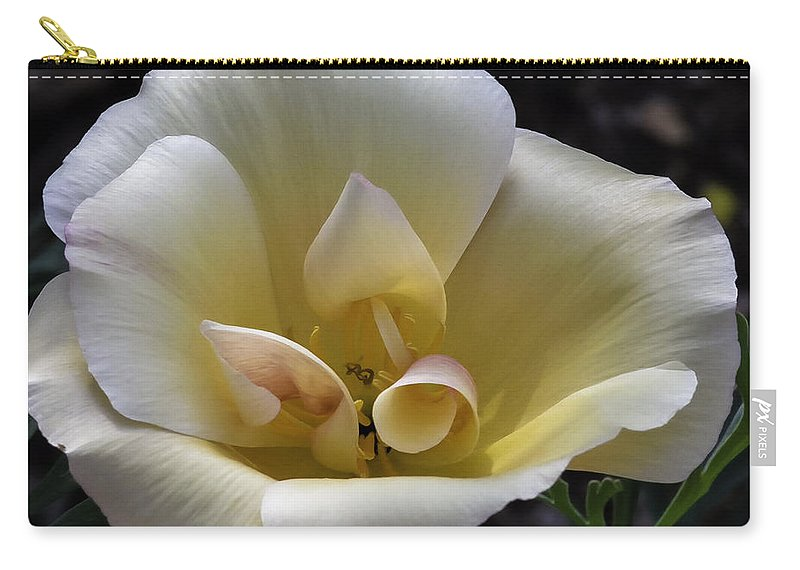 Flower Carry-all Pouch featuring the photograph Exquisite by Lorraine Harrington