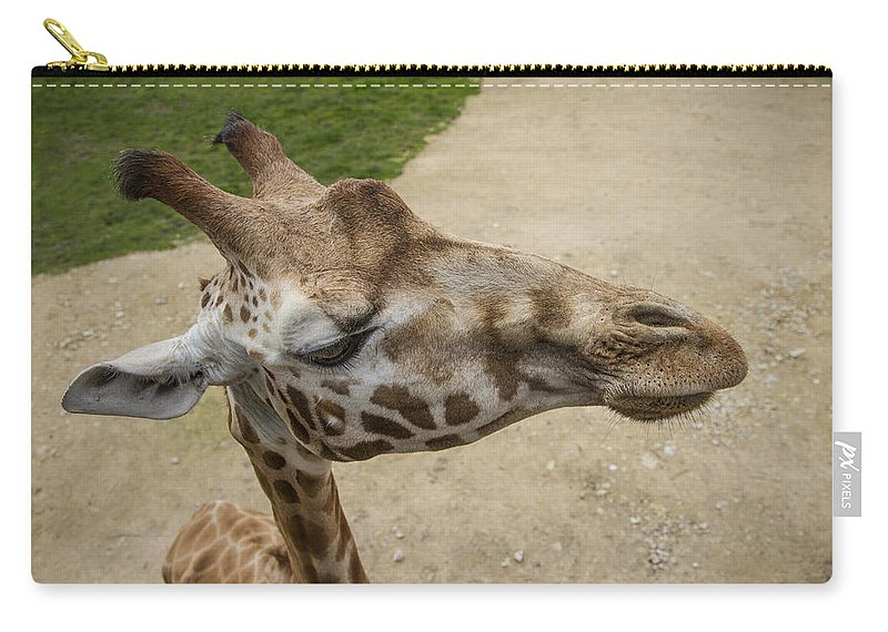 Clare Bambers Carry-all Pouch featuring the photograph Eye Level. by Clare Bambers
