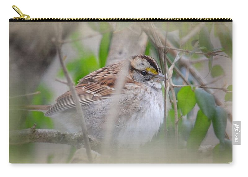Eye On The Sparrow Carry-all Pouch featuring the photograph Eye On The Sparrow by Maria Urso