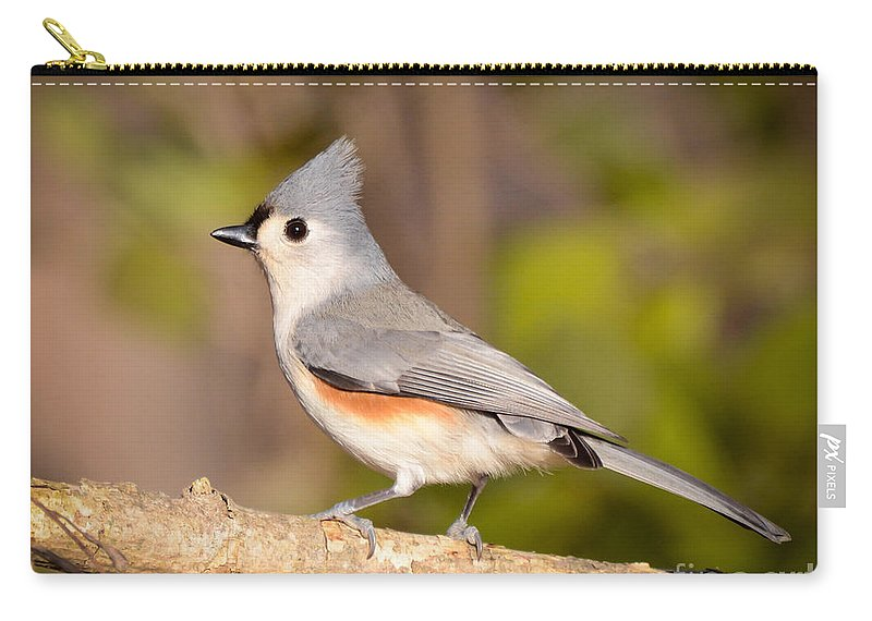 Tufted Titmouse Carry-all Pouch featuring the photograph Eyes Of Love by Kerri Farley