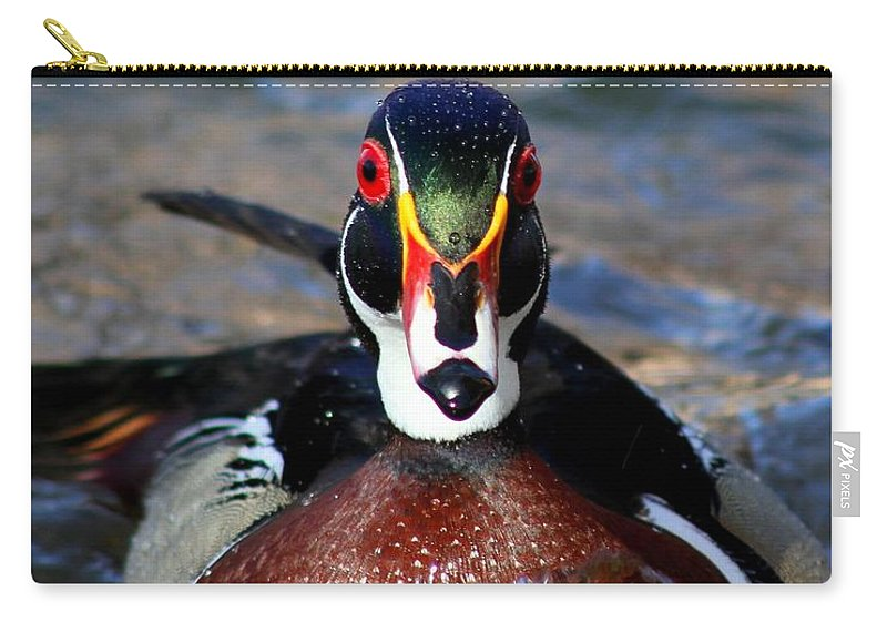 New Mexico Carry-all Pouch featuring the photograph Face To Face by Ashley M Conger