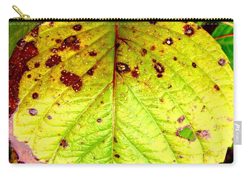 Nature Carry-all Pouch featuring the photograph Fading Hydrangea Leaf by Debbie Portwood