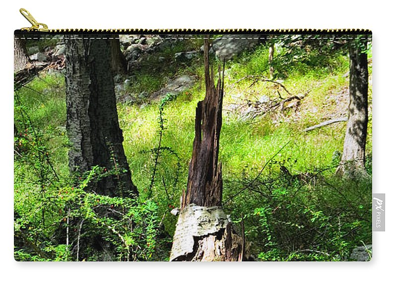 Sky Carry-all Pouch featuring the photograph Fairy Dwelling by Art Dingo