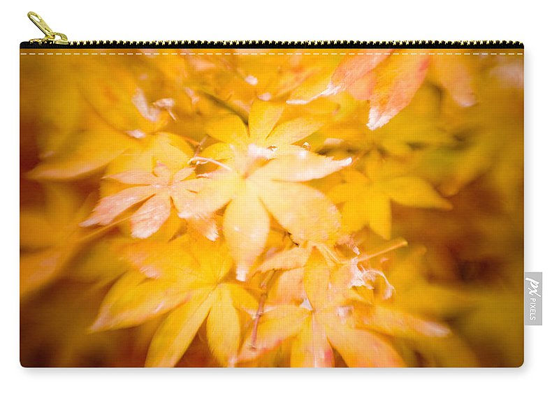 Color Carry-all Pouch featuring the photograph Fall Colors 6664 by Timothy Bischoff